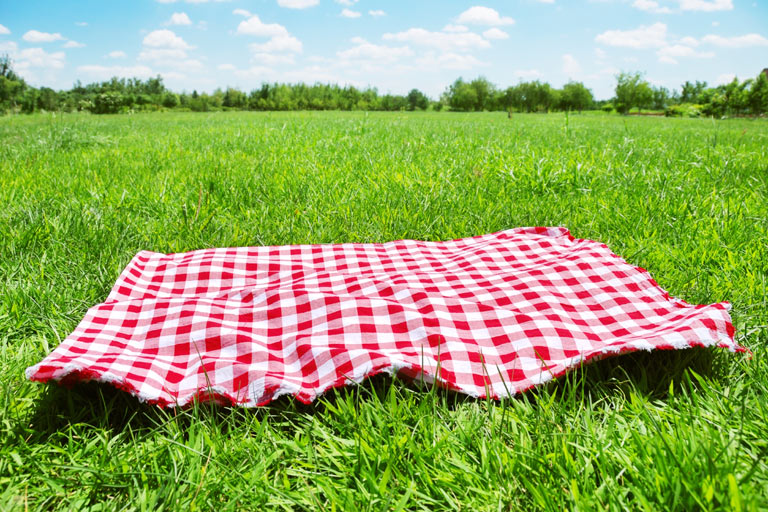 What is a picnic? Food historians tell us picnics evolved from the elaborate traditions of moveable outdoor feasts enjoyed by the wealthy. Medieval hunting feasts, Renaissance-era country banquets, and Victorian garden parties lay the foundation for today's leisurely repast.