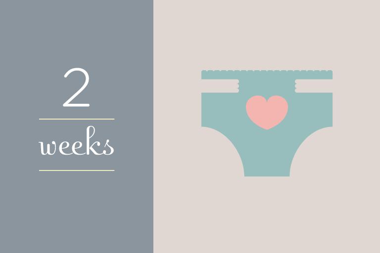 BabyGuide_week_2