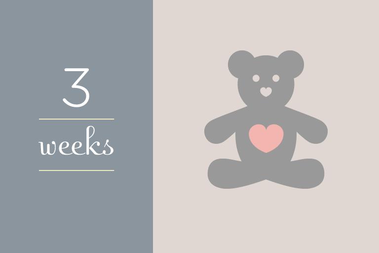 BabyGuide_week_3