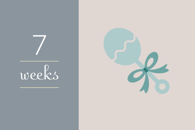 BabyGuide_week_7b