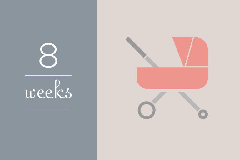 BabyGuide_week_8b