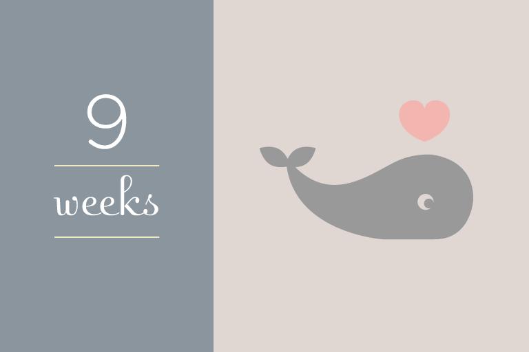 BabyGuide_week_9